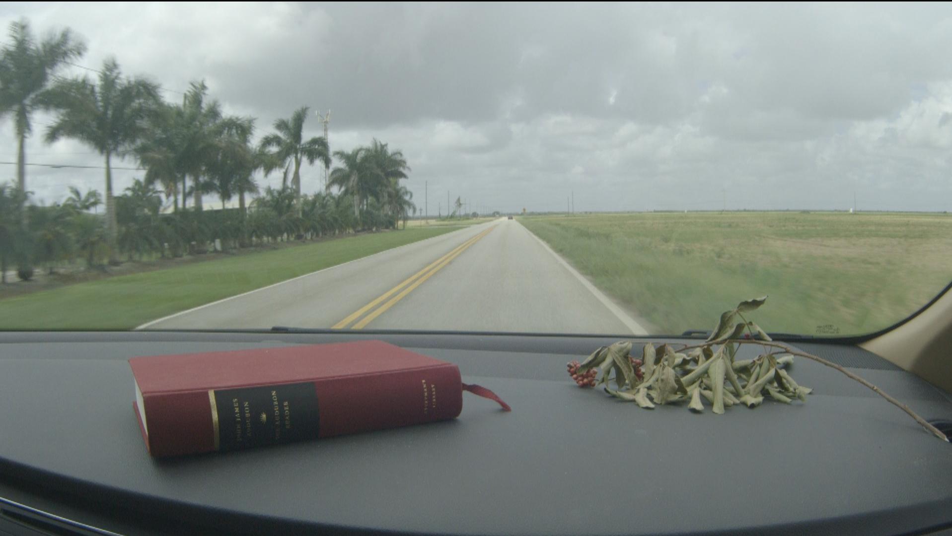 TheImageHunter_Everglades6