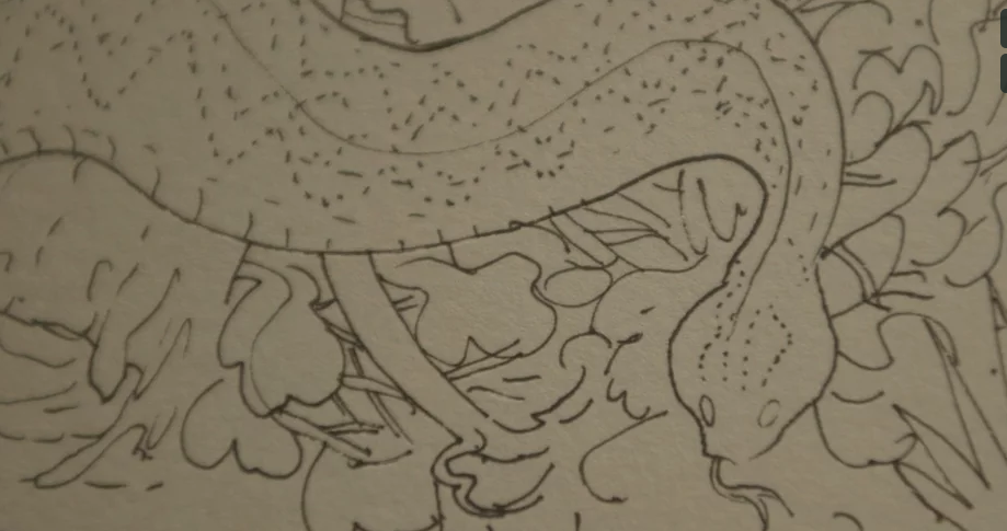 Video: Sketches from the South